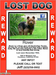 Lost Pet Poster Template Lost Dog Poster Template Movie Ticket Templates F On Lost Dog Flyers 12