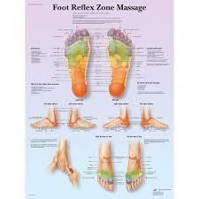Foot Chart Foot Reflex Zone Massage Chart