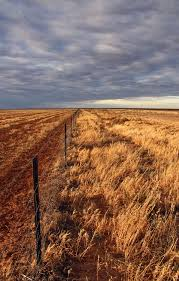essay on drought an essay on drought list the impacts of drought  an essay on drought list the impacts of drought also list the drought on the hay