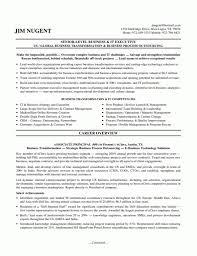 Information Technology Seniort Manager Resume Sample It Director