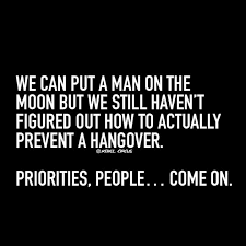 Hangover Quotes Gorgeous 48 Best Beer Stuff Images On Pinterest Funny Images Funny Photos
