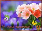 Открытки мужчинам цветы