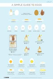 Fried Egg Cooking Chart Egg Styles Different Egg Styles Explained