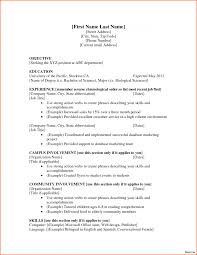 Resume First Job No Experience Example Salon And Fitness Attractive Esthetician Resume Template Sample With 18