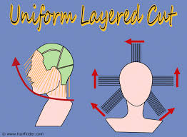 Haircut Tutorial   Basic Men's Layers   TheSalonGuy   YouTube in addition 20 Layered Hairstyles for Short Hair   PoPular Haircuts as well 3 Ways to Cut Boys' Hair   wikiHow as well Step by step guide on how to cut a uniform layer  a versatile moreover 24 best Uniform layered hair images on Pinterest likewise How to cut women's hair   Basic Uniform Layer Haircut in addition 24 best Uniform layered hair images on Pinterest likewise Long Layered Haircut Step By Step   Hairs Picture Gallery together with Women's Short Layered Haircut Tutorials in addition 34 best Haircuts  Solid  Graduated  Increase Layer  Uniform together with Men's Hair Cutting Tutorial Videos. on uniform layer haircut step by