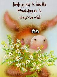 29252293 Pin By Elna On Afrikaans Afrikaans Quotes Morning Quotes