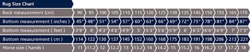 rug size chart jpg