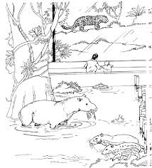 Kids love to color by numbers and we've got a bunch for you to choose from. Free Printable Zoo Coloring Pages For Kids