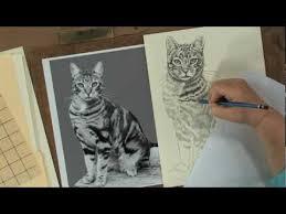 realistic animals to draw. Fine Realistic Preview  Keys To Drawing Realistic Animals With Claudia Nice To Draw Y