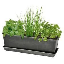outdoor herb garden kit. Delighful Kit IndoorOutdoor Herb Grow Kit  Smith U0026 Hawken In Outdoor Garden D