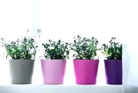 garden pots plants plant large flower ikea white uk