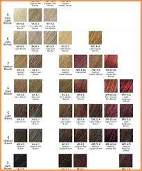 Ion Color Chart Ion Demi Permanent Hair Color Chart Lajoshrich Com
