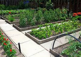 deck vegetable garden ideas amazing of raised garden containers deck vegetable garden ideas small deck vegetable deck vegetable garden