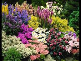 Small Picture Magnificent Flower Garden Ideas About Home Design Planning with