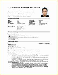 Job Application Resume Sample Template Curriculum Vitae Example Cv