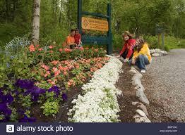 family enjoys flower ak botanical garden anchorage sc summer
