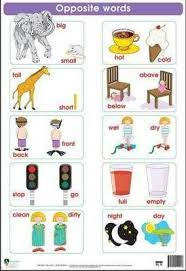 Opposite Words Wall Chart 9781770280649