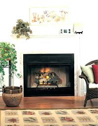cleaning glass fireplace doors toddmcquade org