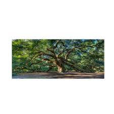 outdoor canvas art. Angel Oak Charleston By Pierre Leclerc Work, 24 47-Inch Canvas Wall Art Outdoor