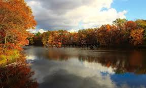 Autumn Cornell Photos - Free & Royalty-Free Stock Photos from ...