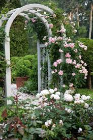 Small Picture 522 best ROSE E ARCHI images on Pinterest Climbing roses