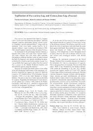 (PDF) Typification of Poa scariosa Lag. and Festuca fenas Lag ...
