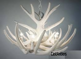 pure white whitetail 9 cast cascade