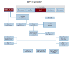 Eeo Process Chart Strategic Plan For Fiscal Years 2018 2022