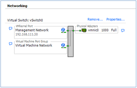 pfsense on vmware vsphere esxi pfsensedocs after esxi was installed before it was possible to connect to it the vsphere client a physical network adapter a vmnic in the diagram had to be