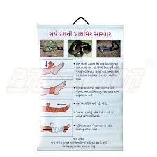 Snake Bite First Aid Chart On Flex