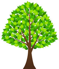 Tree with Green Leaves Transparent PNG Clip Art Image