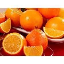honeybells and grove navel oranges prized florida citrus varieties gift hale