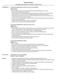 Marketing Agent Resume Samples Velvet Jobs