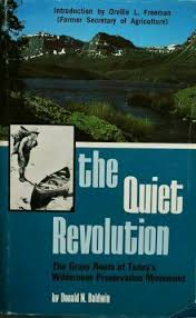 The Quiet Revolution by D. N. Baldwin (Hardcover) for sale online | eBay
