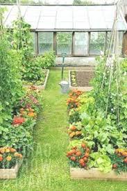 balcony vegetable garden ideas for