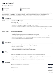 Awesome Infographic Functional Resume Examples Modern Executive Level Position 20 Cv Templates Create A Professional Cv Download In 5