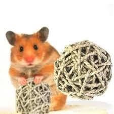 6cm Hamster Rabbit Toys Hamster Ball Guinea Pig Toys Grass Ball ...