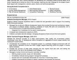 Human Voiced Resume Example Business Development Manager Resume Badak Plan For New Sales 66