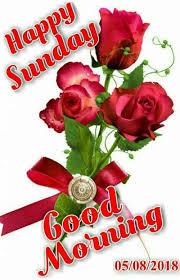 Pin by Priscilla Jennings on Ravi | Happy sunday morning, Sunday greetings,  Good morning images