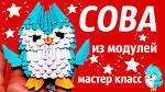 Мк модульного оригами сова