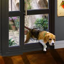 dogwalk medium unobtrusive slimline dog door