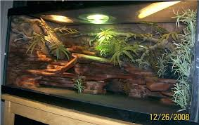 lights for bearded dragon one of my new baby cages is done