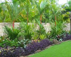 Small Picture build a living wall tropical zen garden tropical plant garden