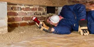 Image result for cost of termite control