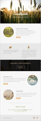 email newsletter strategy the 25 best free email newsletter templates ideas on pinterest