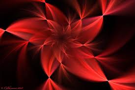 Red Flower Wallpaper Red Flower Wallpaper Qygjxz