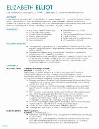 Nurse Resume Examples Awesome Sample It Resume Best Rn Resume Sample