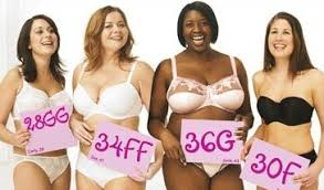 size g breast pictures fuller figure fuller bust cheap bras can be costly