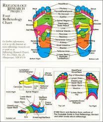 Foot Reflexology Chart Reflexology Research Project