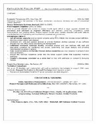 Professional (Mid Level) Resume Sample page 2